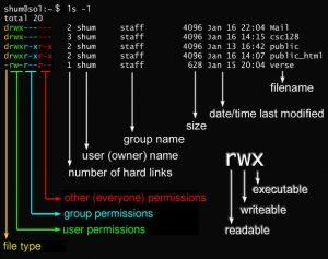 Устанавка прав доступа пользователей в Linux